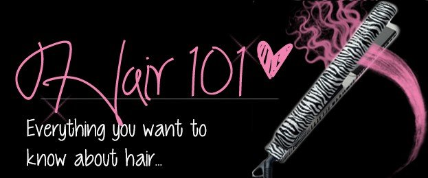 holleewoodhair.com hair 101 header