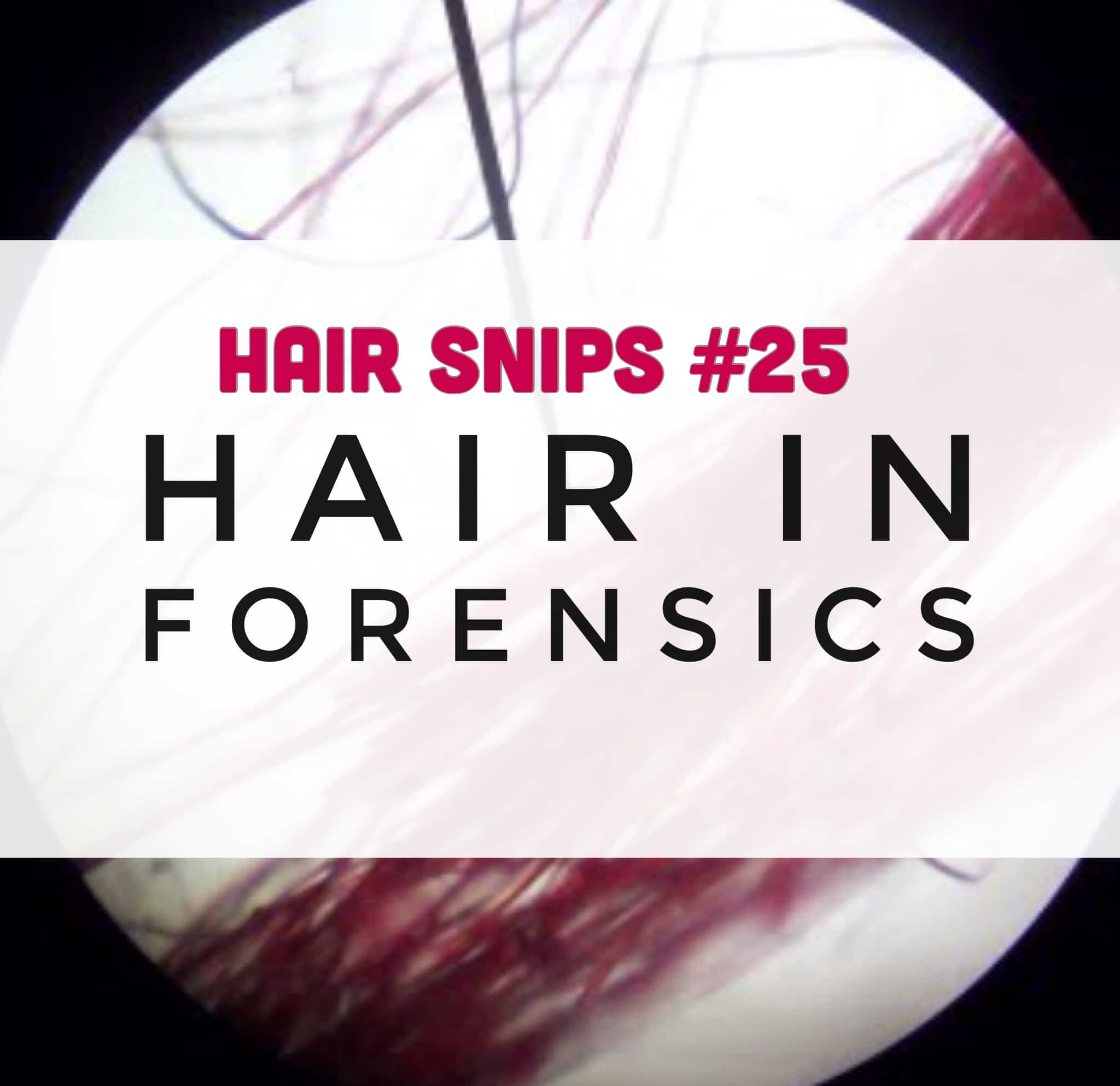 Do you know everything scientists can tell about you from a single strand of hair? Learn all about hair in forensics...