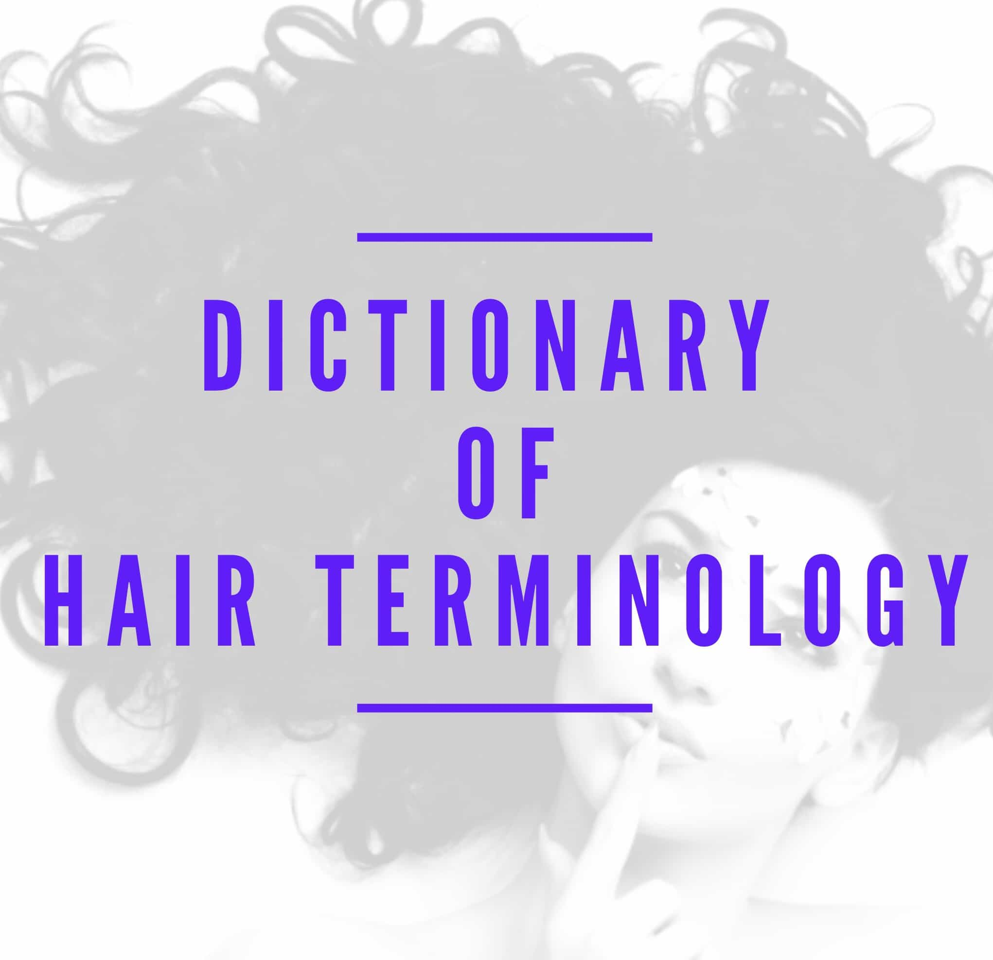 Do you ever wonder what all the hairstylist lingo is? Check out this dictionary of hair terminology!